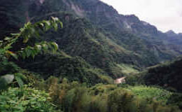 Lush mountains in central Taiwan.